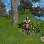 arena-online-7