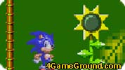 Sonic in the country sunflowers
