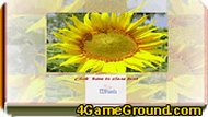 Sunflower Photo Puzzle